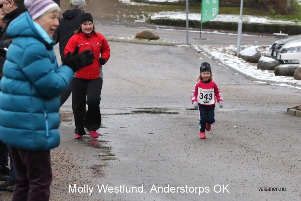 2017120_sylvesterloppet (19)