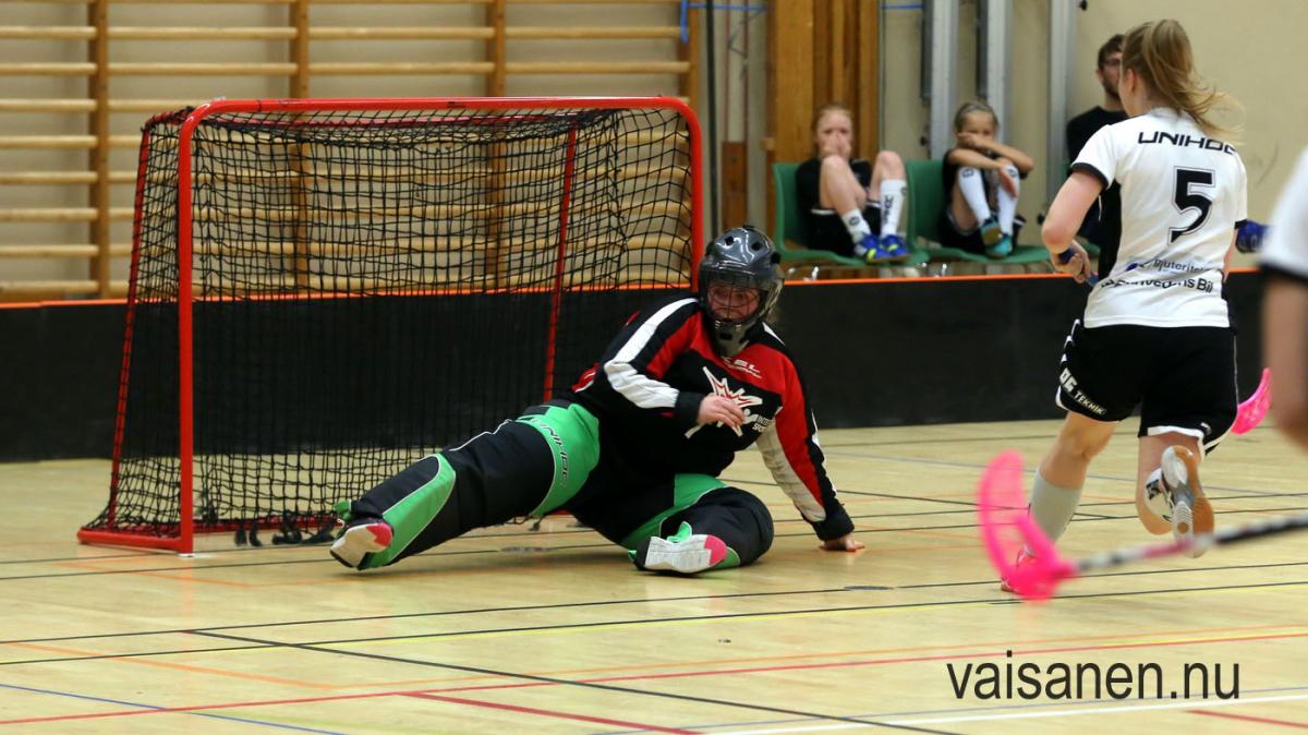 201800114vikdam-växjöugif (5)