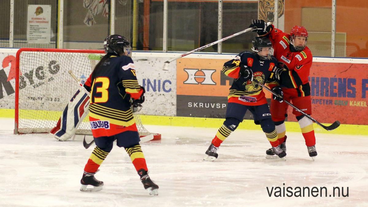 2018-01-21 Kalmar HC - Värnamo GIK (9)