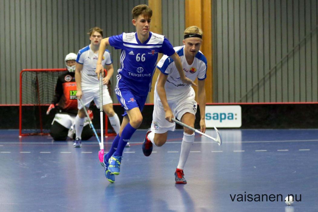 20181012vetlandaibf-cl98ic (2)