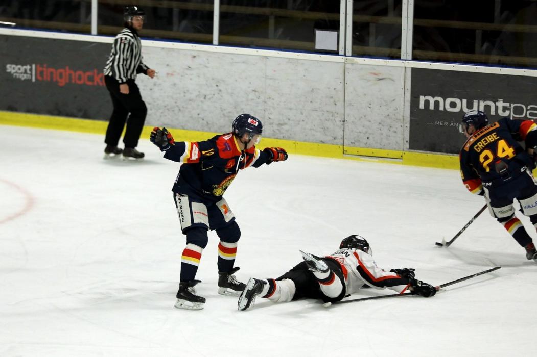 20190109värnamohockey-olofströmsik (10)