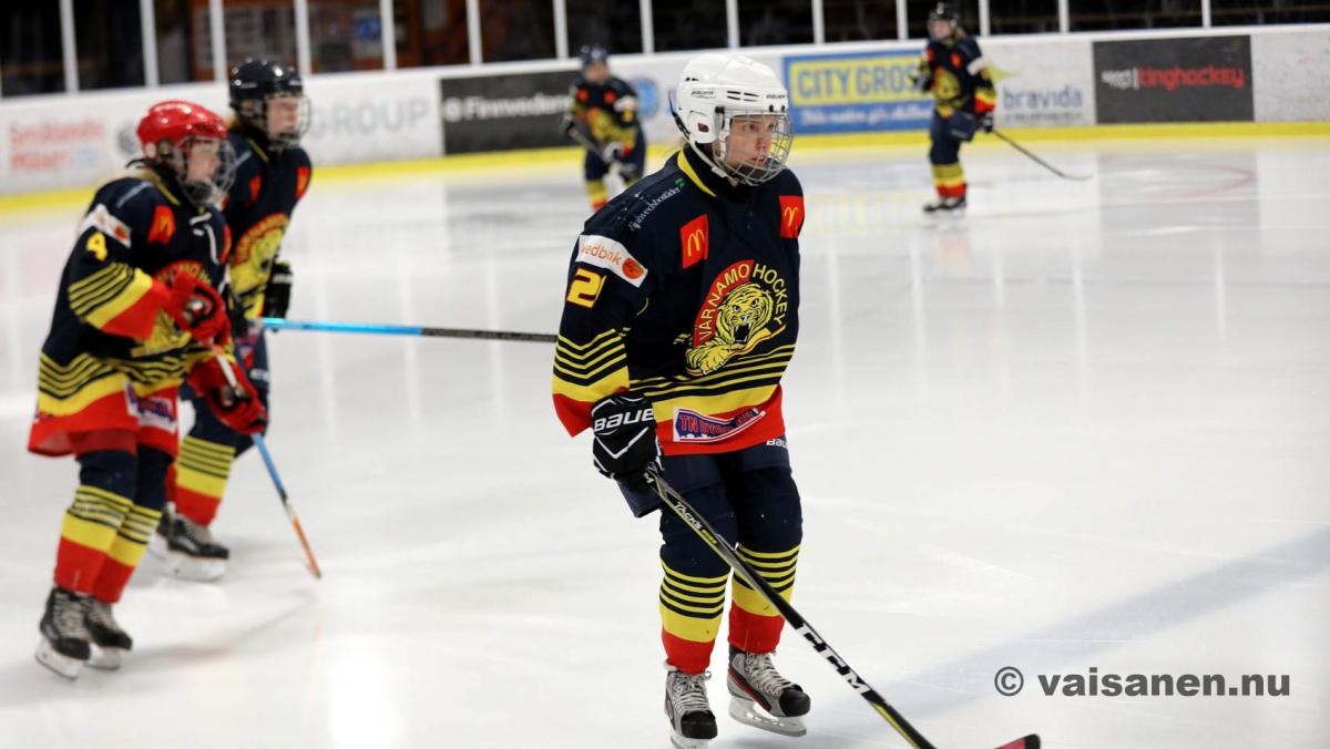 20190316värnamohockeydam (11)
