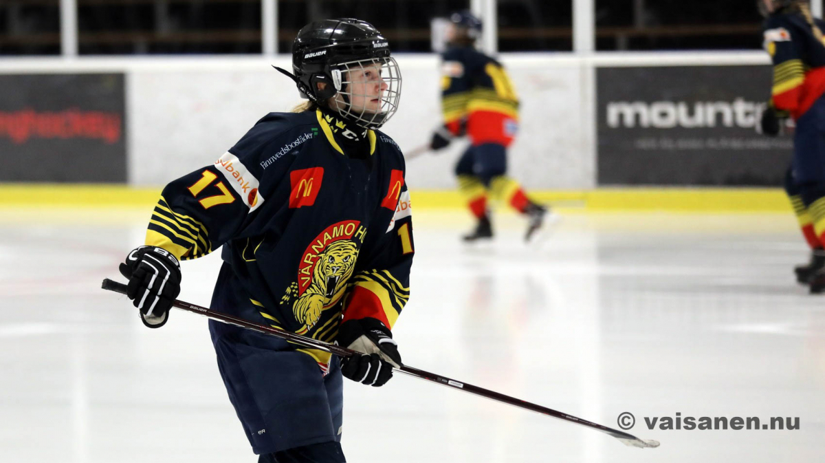 20190316värnamohockeydam (12)