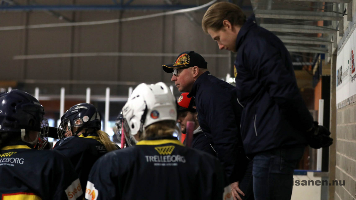 20190316värnamohockeydam (16)