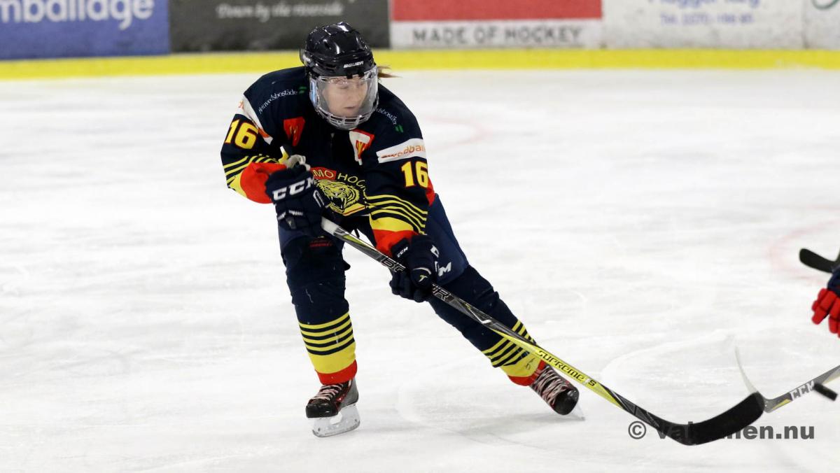 20190316värnamohockeydam (17)