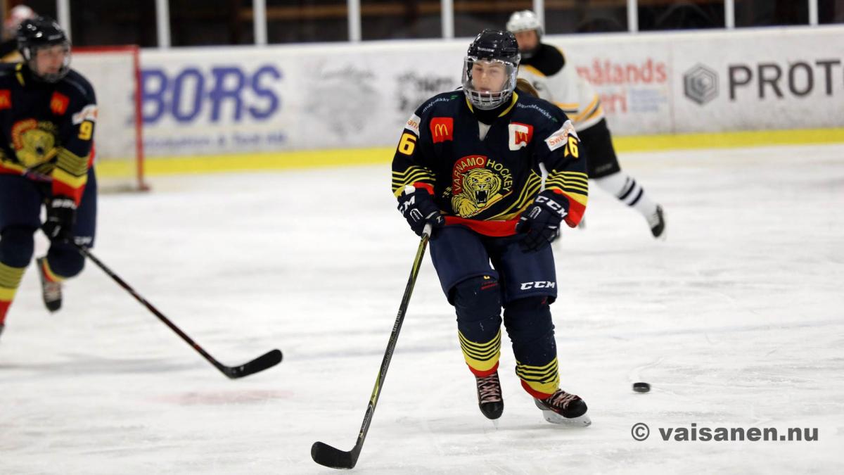 20190316värnamohockeydam (18)