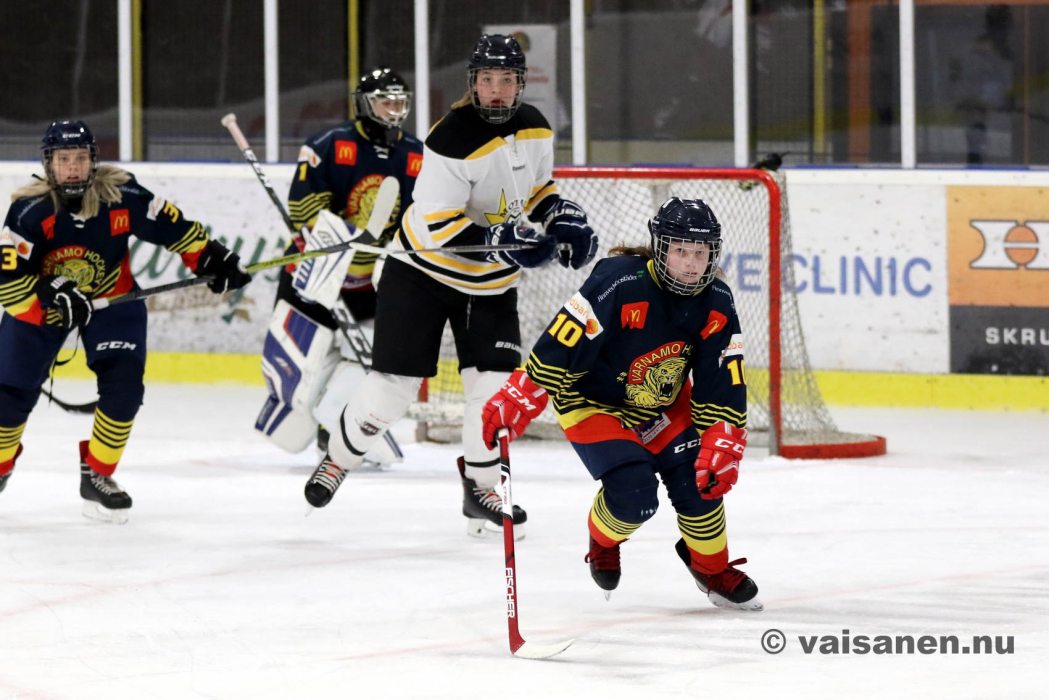 20190316värnamohockeydam (19)