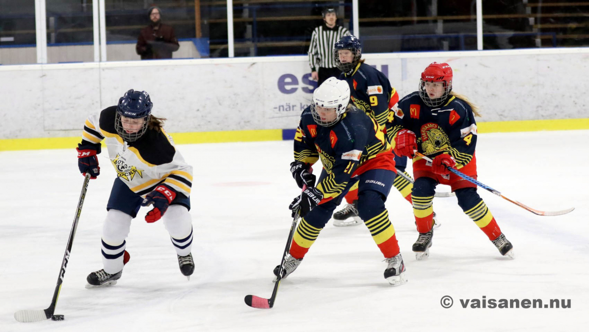 20190316värnamohockeydam (21)