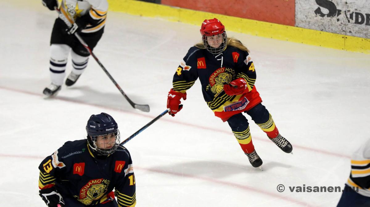 20190316värnamohockeydam (22)