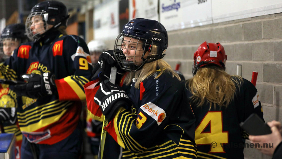 20190316värnamohockeydam (3)