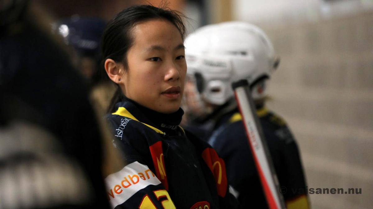 20190316värnamohockeydam (5)
