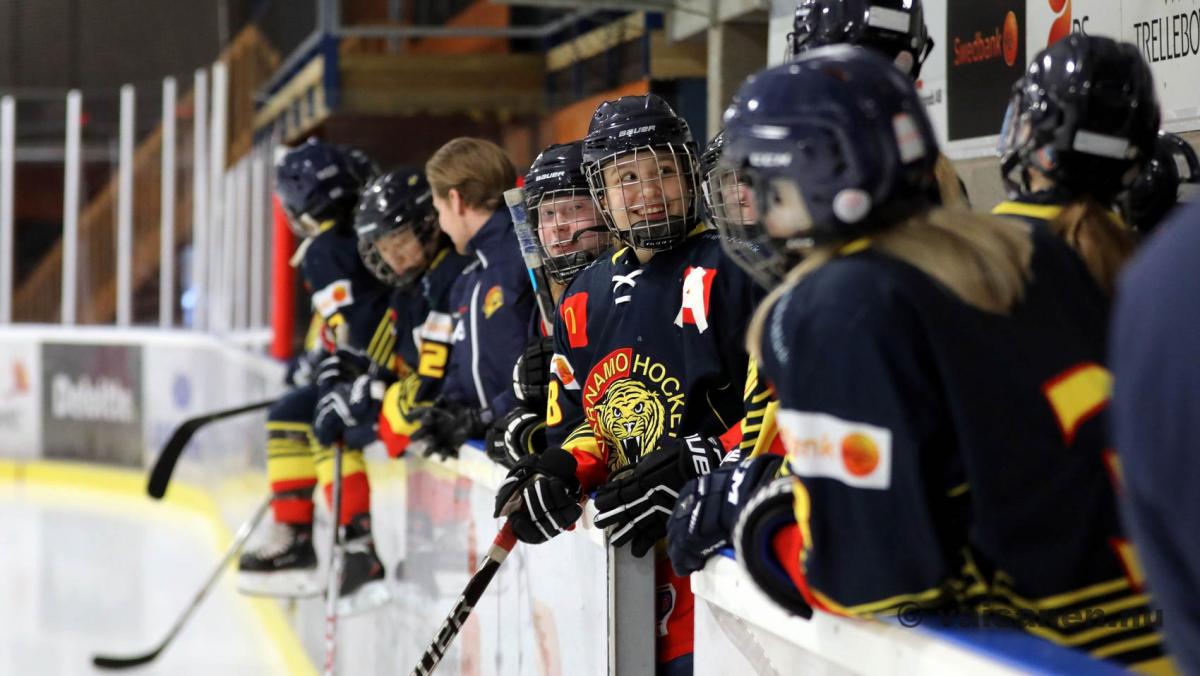 20190316värnamohockeydam (6)