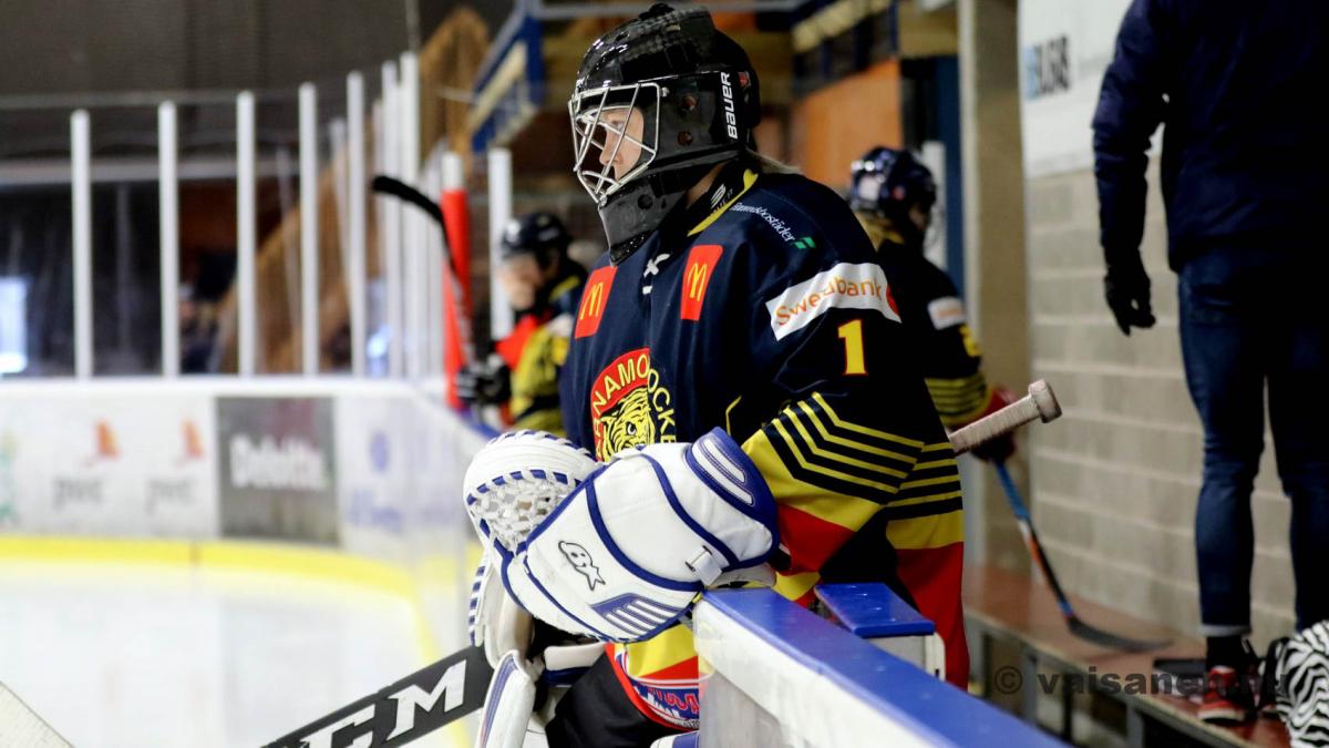 20190316värnamohockeydam (8)